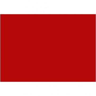 """Foam 9X12"""" (10 Pack) Red"""