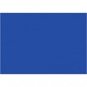 "Foam 9X12"" (10 Pack) Blue"