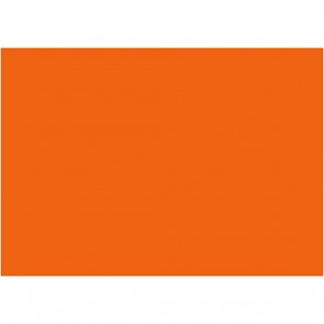 "Foam 9X12"" (10 Pack) Orange"