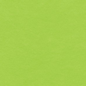 "Acrylic Felt 9X12"" (10 Pack) Lime Green"