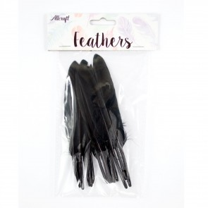 Duck Feather 13cm Black (15 Pack)