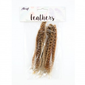 Chicken Feather 15cm Natural 1 (15 Pack)