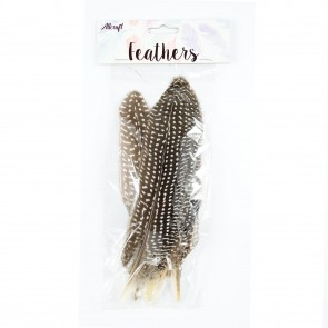 Goose Feather 22cm Natural (10 Pack)
