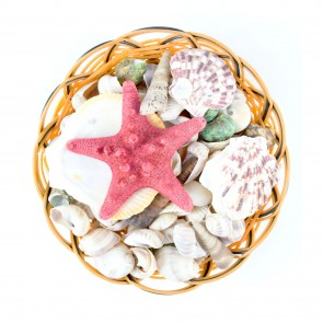 Seashells Basket Assorted Mix