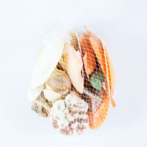 Seashells Large Bag Assorted Mix