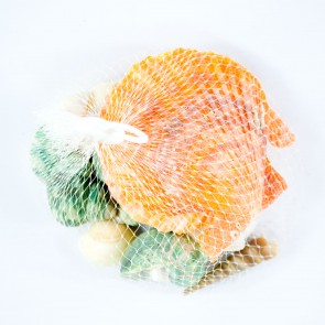 Seashells Bag Assorted Size Mix