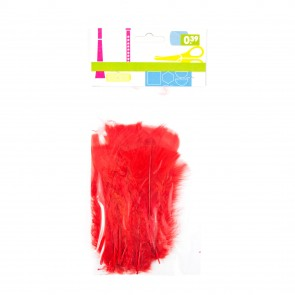 Turkey Feather (20 Pack) Red