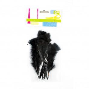 Turkey Feather (20 Pack) Black