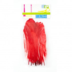 Goose Feather (12 Pack) Red