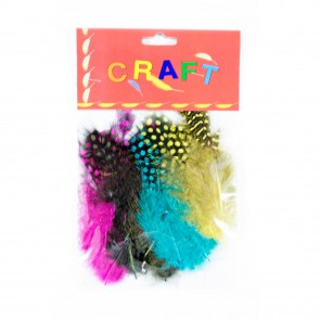 Guinea Fowl Feather (25 Pack) Assorted