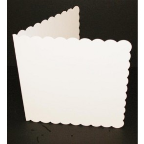 "6x6"" Cards & Envelopes Scalloped White (50 Pack)"